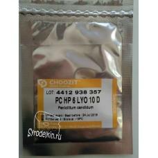 Белая плесень Penicillium Candidum  HP 6 LYO CHOOZIT™, 10 D